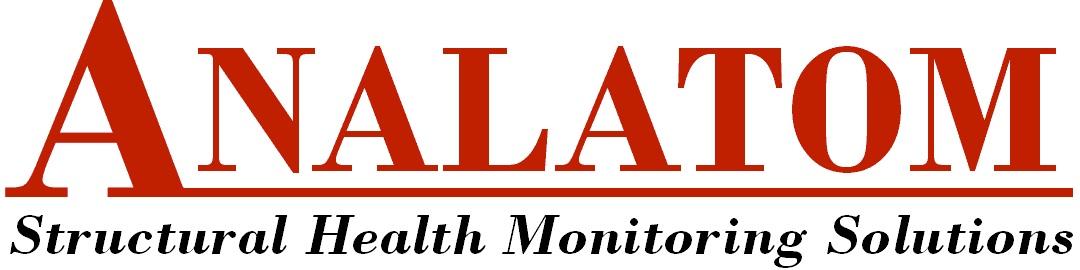 Analatom Logo
